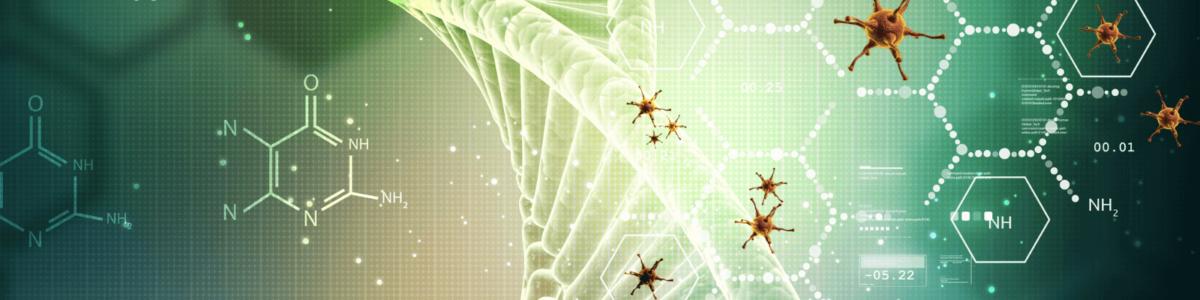 DNA strand virus